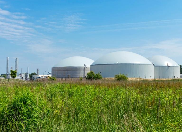 Pre-feasibility Study for an Anaerobic Digestion Plant
